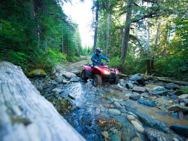 Driving an ATV through a creek