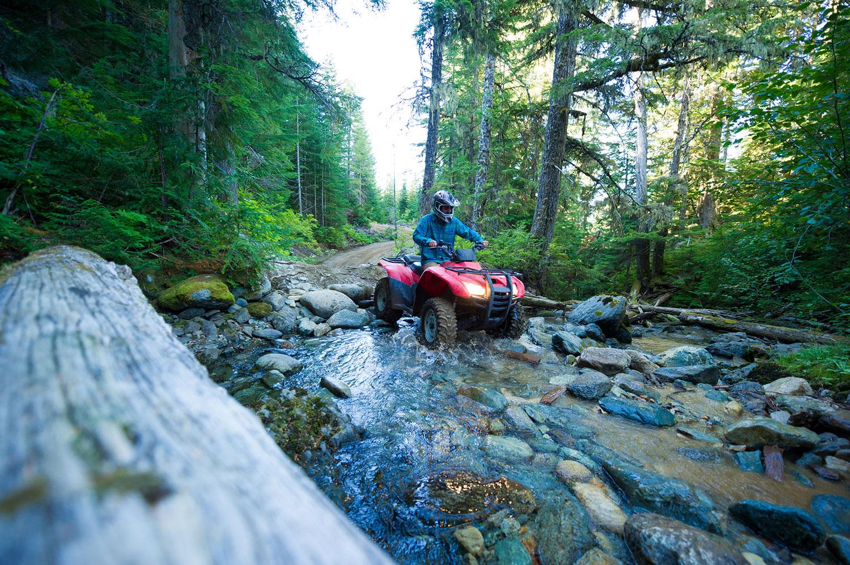 Driving an ATV through a creek